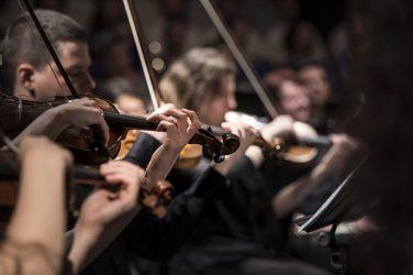 """Le violoncelle """"adoucit les mœurs"""" et combat la douleur"""