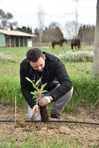 250 arbres plantés pour préserver la biodiversité