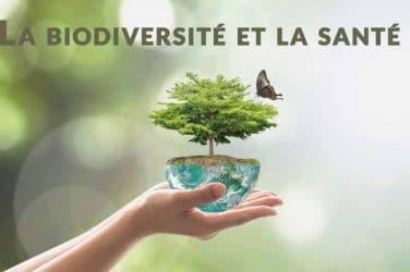 La biodiversité et la santé