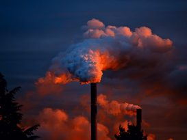 Les 20 ans du Psas : Programme de surveillance air et santé