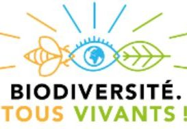 """Consultation participative """"Plan Biodiversité"""" !"""