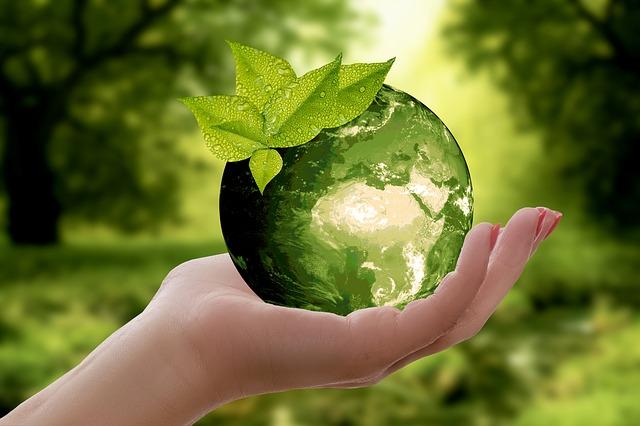 Une Charte de l'Environnement: pourquoi faire?