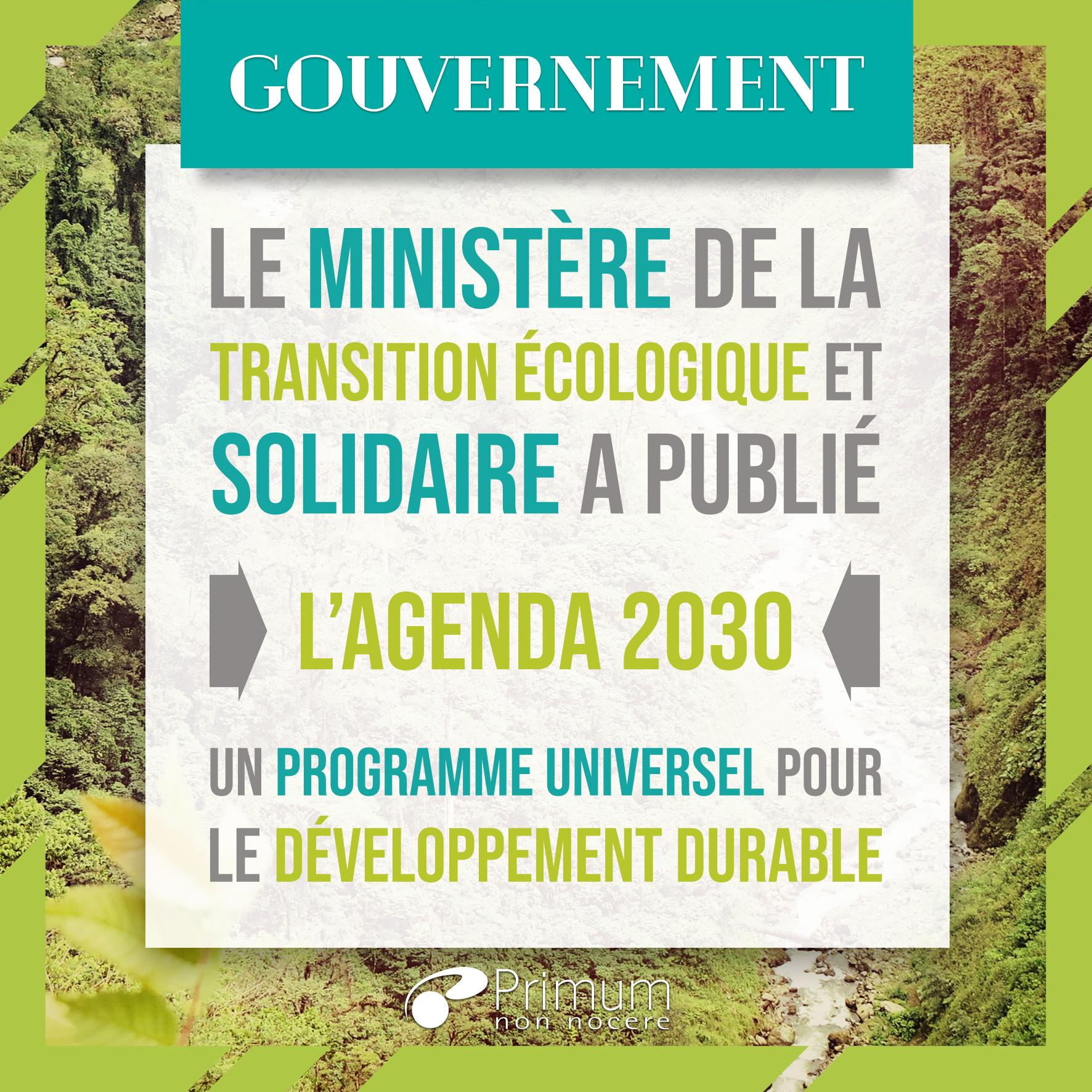 programme 2030