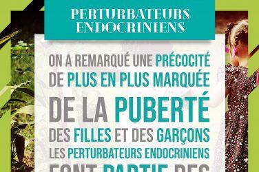 puberté et perturbateurs endocriniens, phtalates, phénols