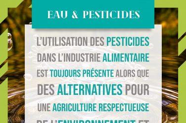 Pesticides dans l'eau