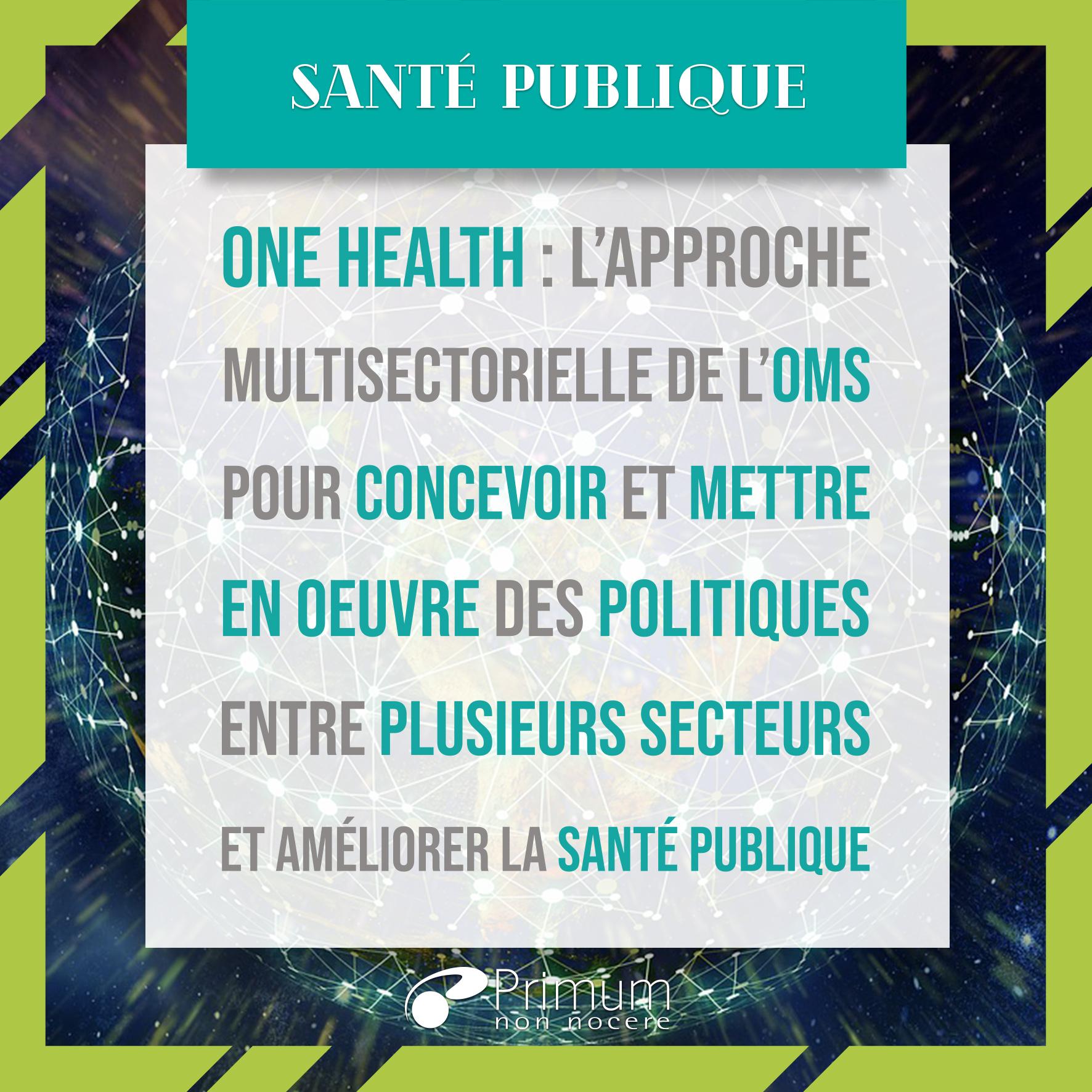 One health : un monde, une santé