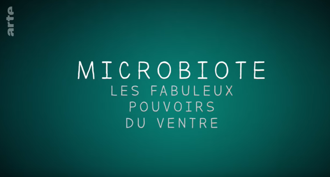 Le microbiote : L'élément important de notre santé !
