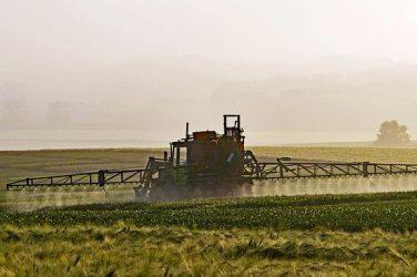 Sauron gagnera-t-il la bataille des pesticides contre nos Terres du Milieu ?