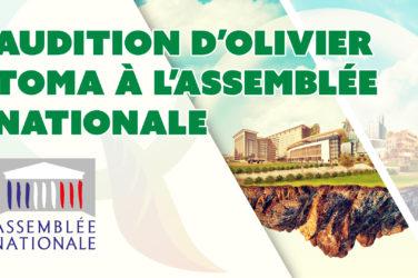 audition olivier toma assemblée nationale commission santé environnementale