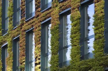 """Un projet """"bâtiment vert"""""""