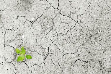 Contre le manque d'eau : Un plan d'adaptation au changement climatique