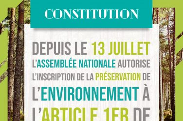 La Constitution va préserver l'environnement