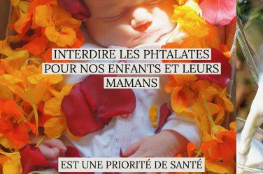 phtalates enfants mamans santé publique