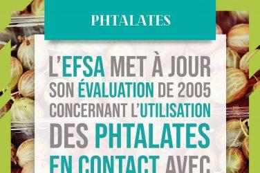 évaluation EFSA phtalates en contact avec aliments